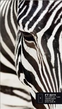 článek safari 27